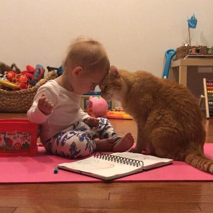 """""""Мой маленький сын и 14-летний кот"""""""