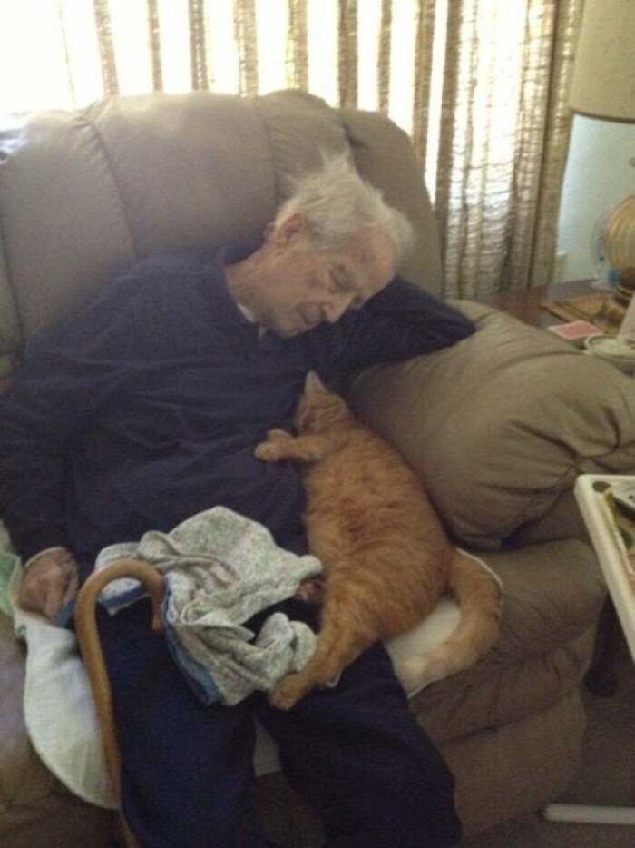 """Мой 100-летний дедушка и его 17-летний кот"""