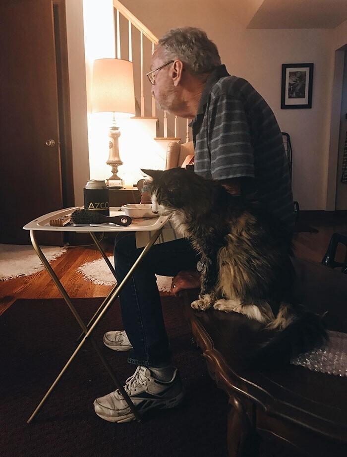 """Мой дедушка и его 20-летний кот. Как говорит дедушка: ""Мы два старичка, и нам весело вместе"""