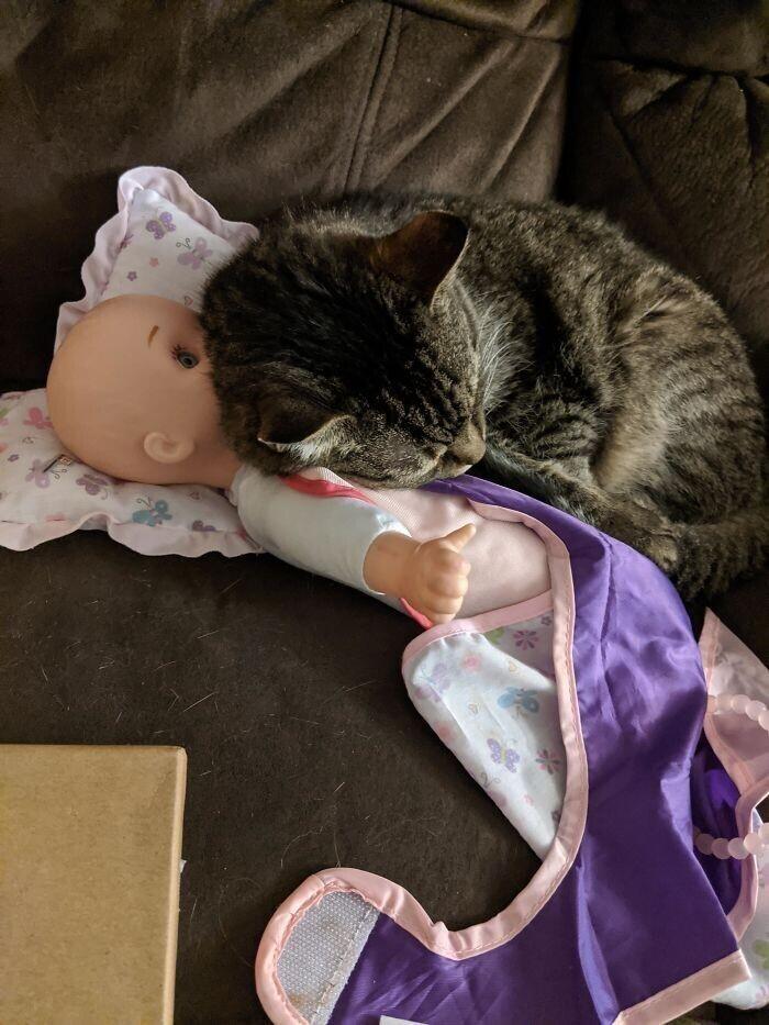 """""""Наша 15-летняя красавица спит на кукле моей дочки, потому что на ней остался ее запах"""""""