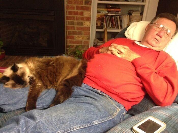 """""""Вот так мой 70-летний папа и его 20-летний кот проводят свои вечера"""""""