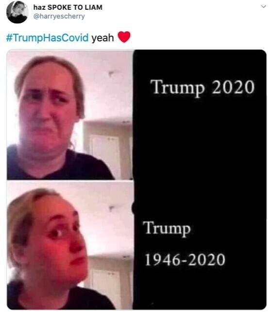 Коронавирус до Трампа добрался
