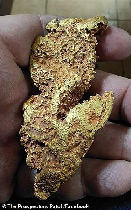 Чистое золото: в Австралии до сих пор встречаются самородки впечатляющих размеров