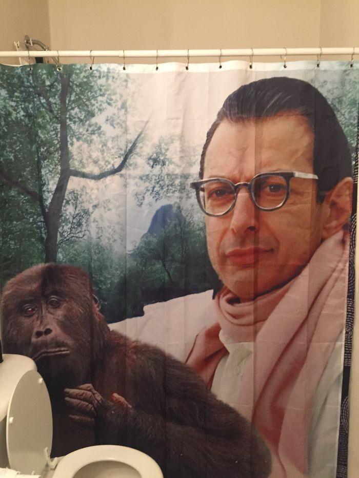 41. «Папа повесил новую занавеску в ванную, и я даже не знаю, как к этому отнестись»