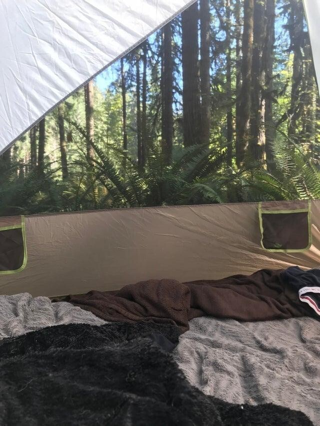 Вид из палатки похож на фотообои