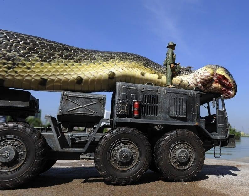 На самом деле змея обычная, машинка игрушечная, а солдаты пластмассовые. Змею жалко, убили для фейка