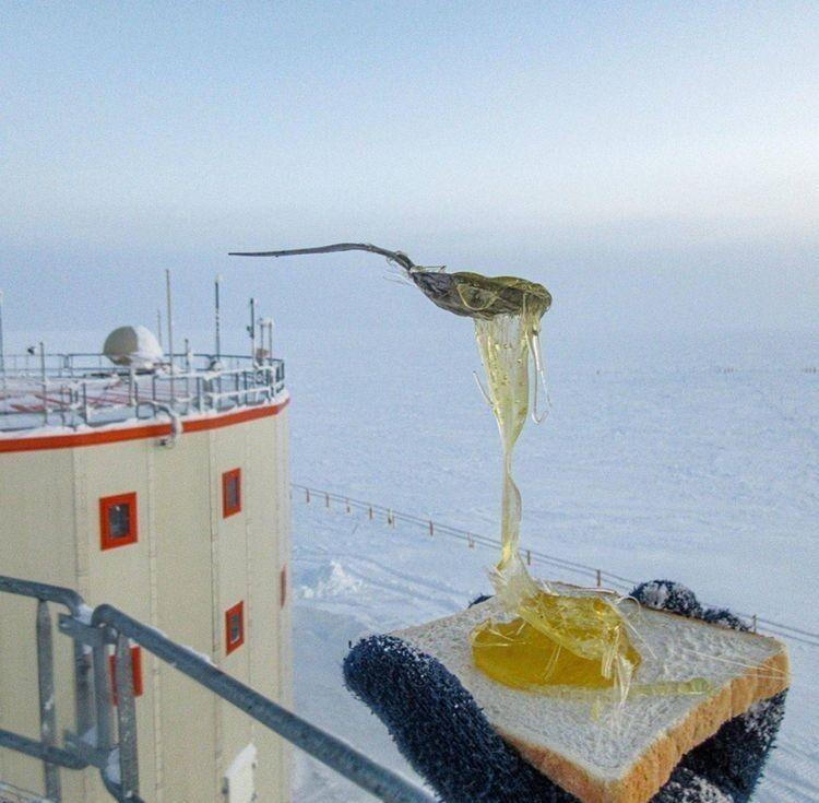 Попытка сделать бутерброд с мёдом в условиях сильного мороза