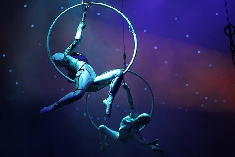Франция запретила использовать животных в цирке, на потеху толпе