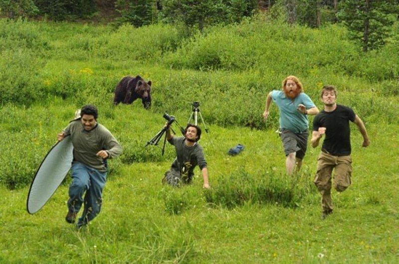 Журналисты убегают от медведя - подделка, медведя взяли с другой фотографии и прифотошопили