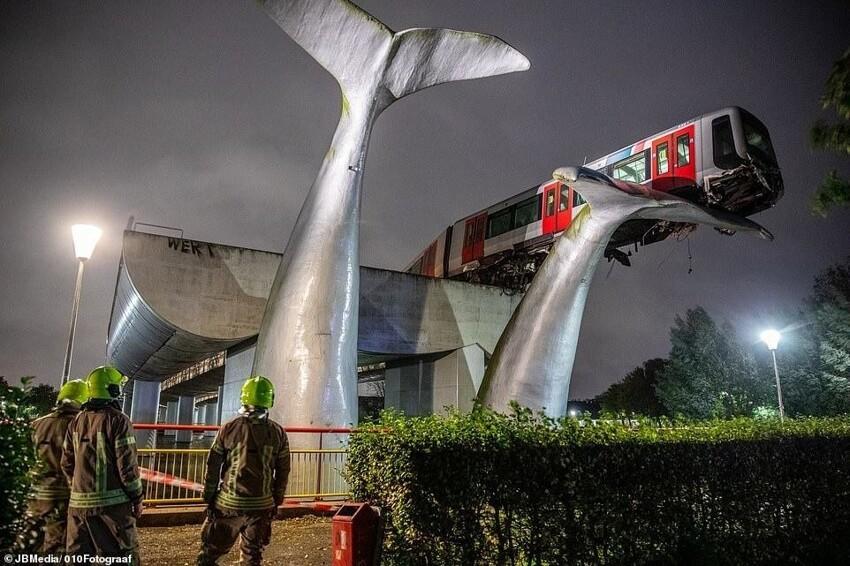 В Нидерландах поезд сошёл с рельсов, но его спас китовый хвост