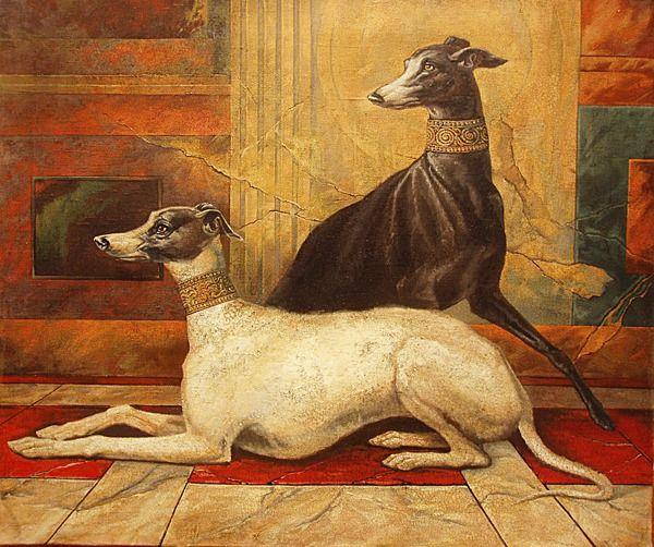 Наглядная эволюция собачьих пород