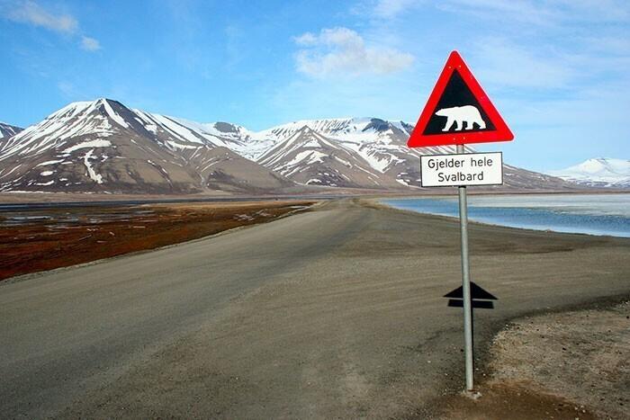 Чем еще удивит нас Норвегии