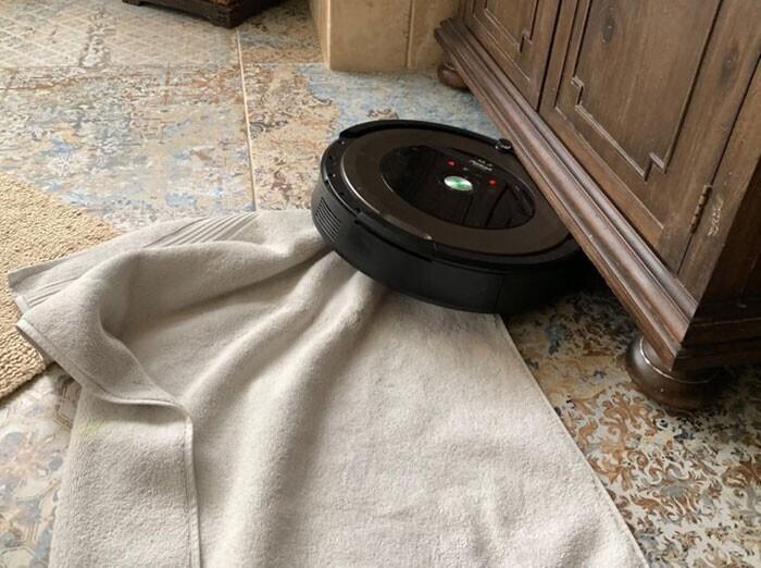 """""""Мало того, что он спер чертово банное полотенце, так он пытался спрятаться под туалетным столиком. Видимо, хотел перекусить в тихой, спокойной обстановке"""""""
