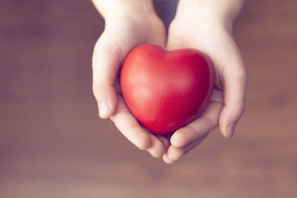 Донорское сердце пережило авиакатастрофу и еще одно падение