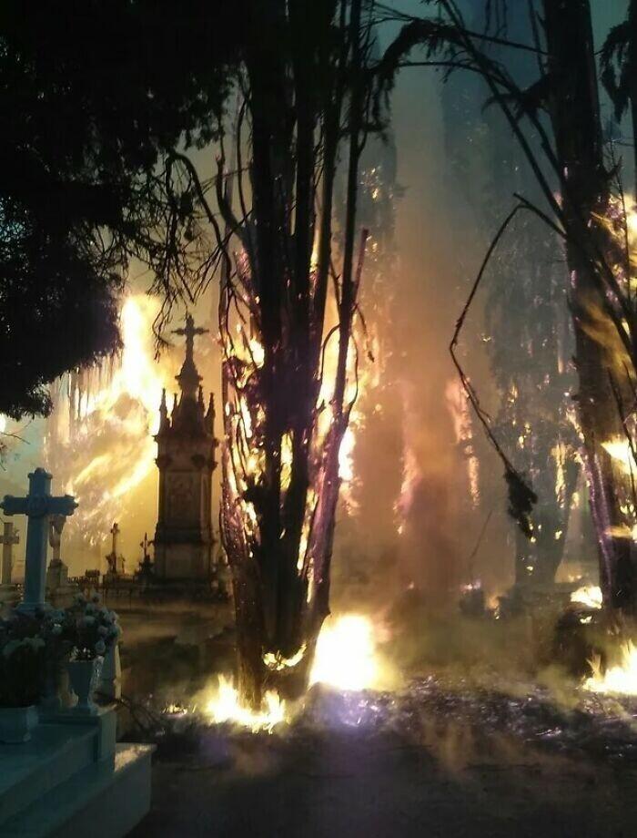 Вчерашний пожар на кладбище выглядит как кульминация фильма ужасов
