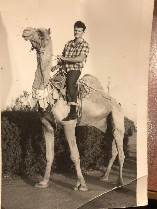 """""""Это единственное фото моего деда, которое есть у нашей семьи. Сделано в 60-х. По рассказам бабушки он был связан с мафией. Моя бабушка ударила его ножом, доставила в больницу и сбежала с моим маленьким отцом в Мексику"""""""
