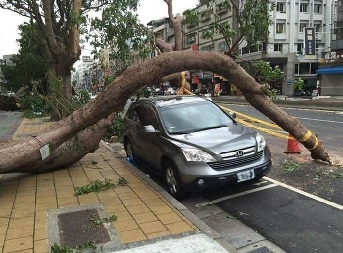 Искусство парковки: не каждому по зубам