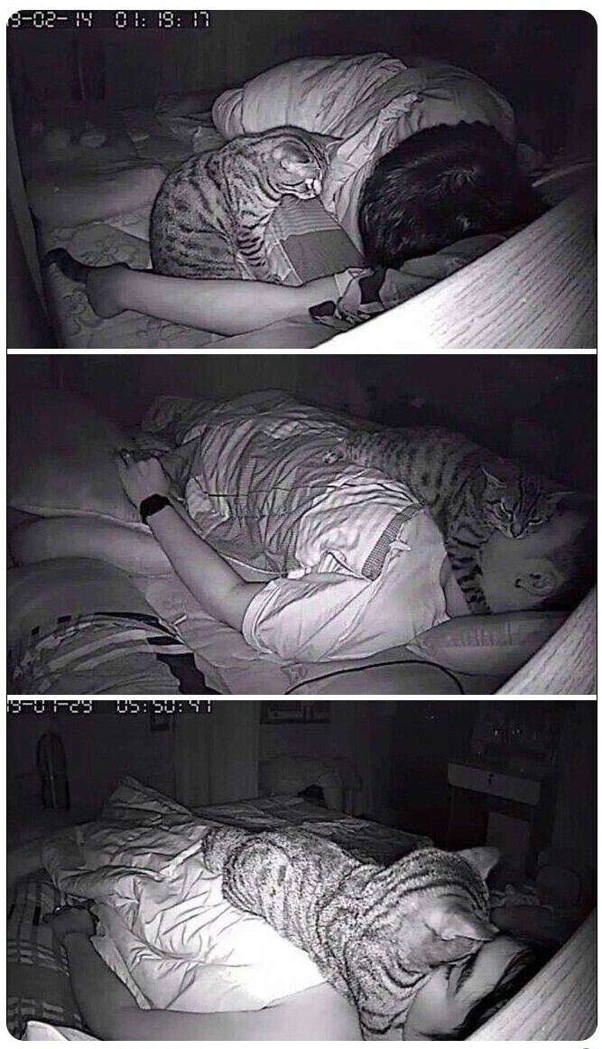 """""""Почему-то не мог нормально дышать во время сна, и решил установить камеру"""""""