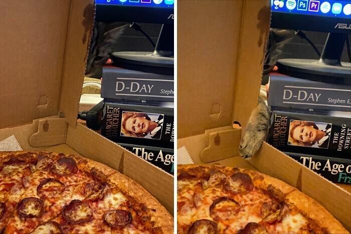 """А кто не любит пиццу?"""