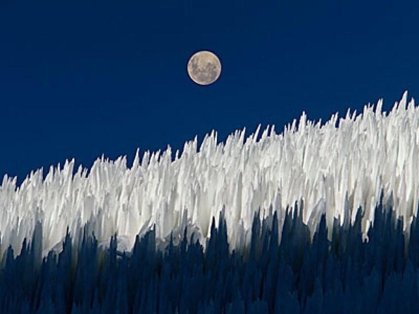 Кальгаспоры или пенитентес. Колючие поля образуются в высокогорных районах с низкой влажностью, могут достигать высоты до 6 метров