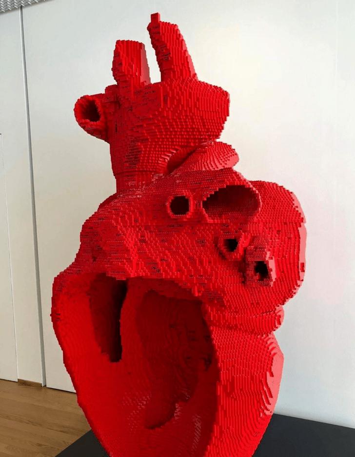 Гигантская анатомическая модель сердца из Lego