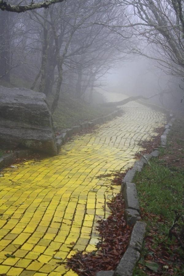 """Дорога из желтого кирпича в заброшенном парке развлечений """"Страна Оз"""" в Северной Каролине"""