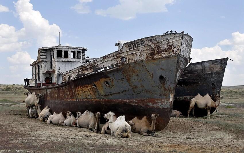 Корабли пустыни: Аральское море
