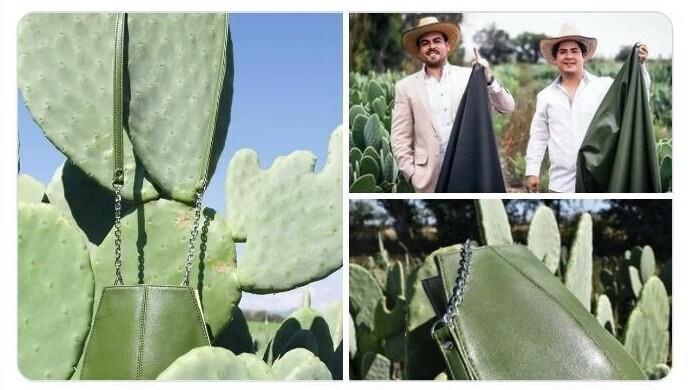 """Кожа из кактуса мягче животной кожи и отлично подходит для изготовления аксессуаров класса """"люкс"""". Сумочка из кактуса - это вещь!"""