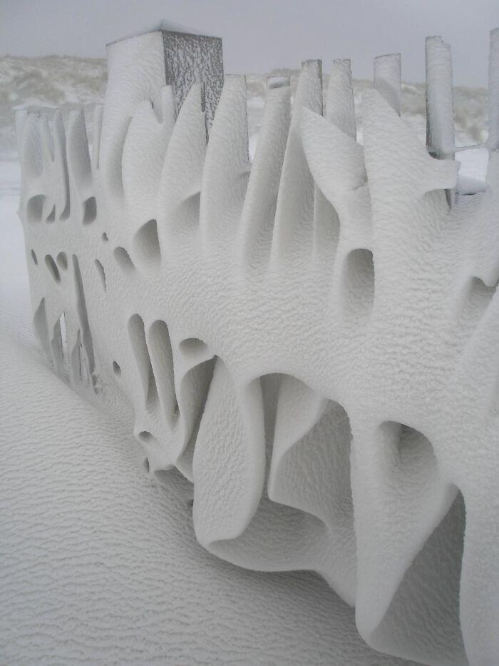 """""""Мой забор за ночь стал необыкновенной снежной инсталляцией. Это Нидерланды"""""""