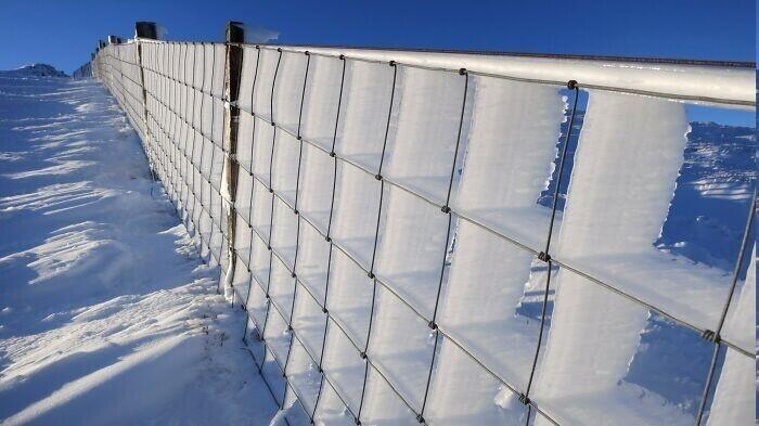 Вот что произойдет с забором из металлической сетки при постоянном ветре и морозе
