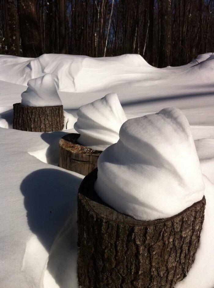 Снежные раковины