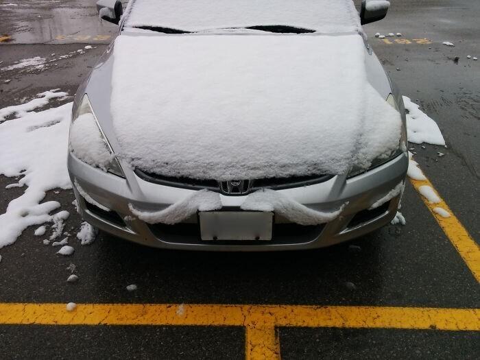 Машина с белыми усами