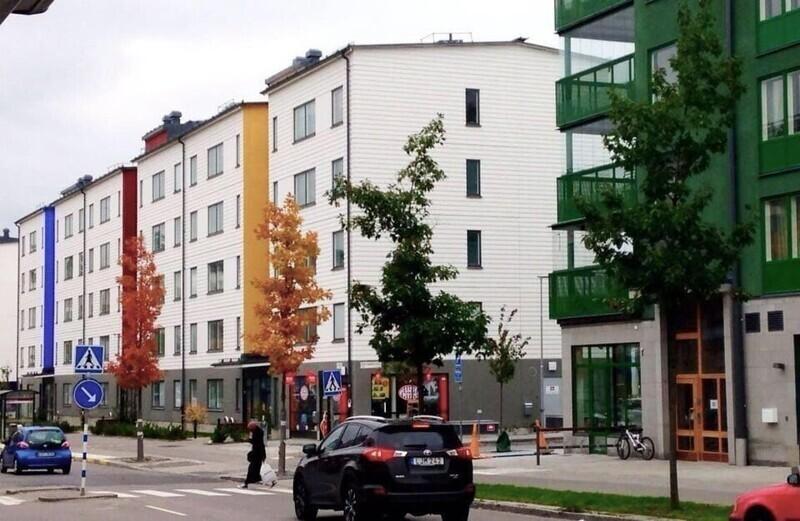 Цвета деревьев совпадают с цветами домов