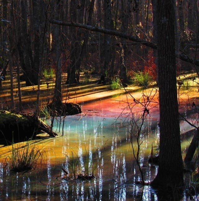 В Национальном парке Конгари вода в озере окрашивается в разные цвета при определенной температуре