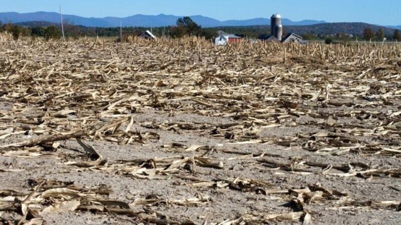 Засуха в США