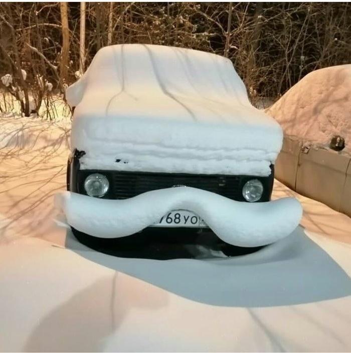Словно усы у автомобиля