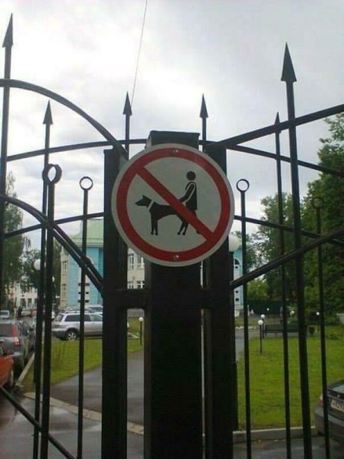 Что-что, говорите, нельзя делать с собаками в парке?