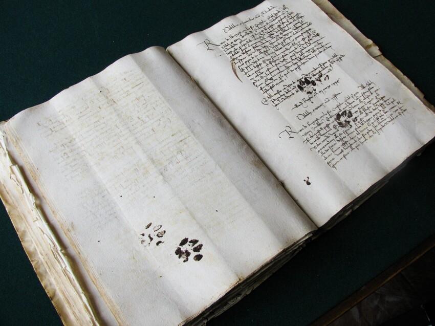 Древний манускрипт рукопись 15-го века
