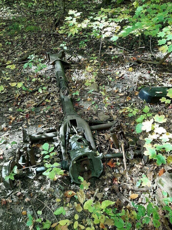 """""""Нашел в лесу странную штуку на колесах"""""""