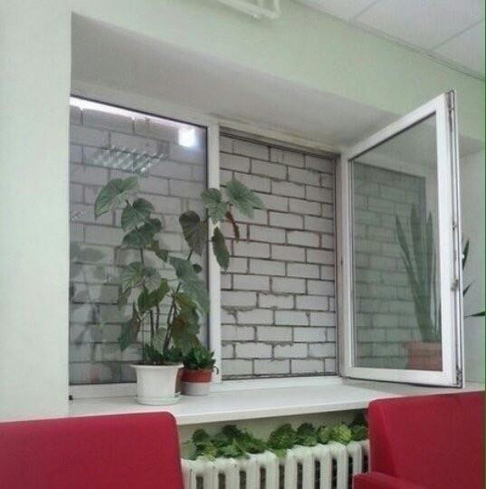 А что видно из вашего окна?