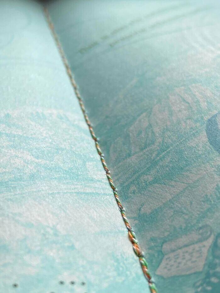 Ирландский паспорт прошит ниткой в цветах ирландского флага