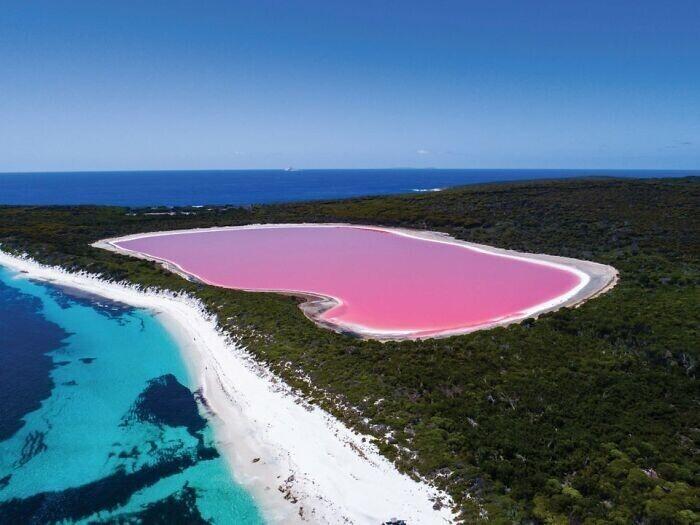 Озеро Спенсер в Австралии. Это его обычный цвет