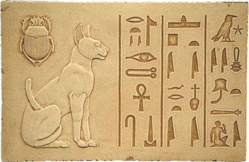 В Древнем Египте смертная казнь полагалась за преднамеренное убийство кошки или ибиса (священных животных)