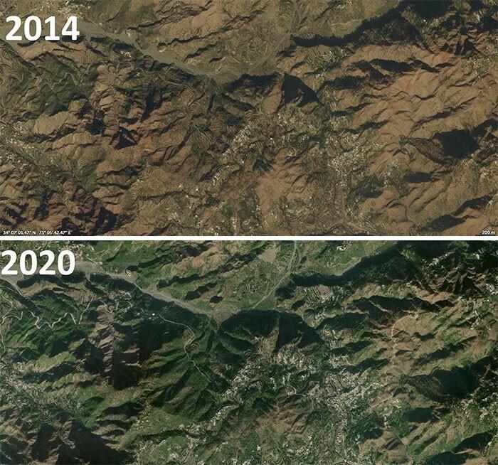 Проект Billion Tree Tsunami по восстановлению лесов и деградировавших земель в Пакистане - прогресс всего за 6 лет