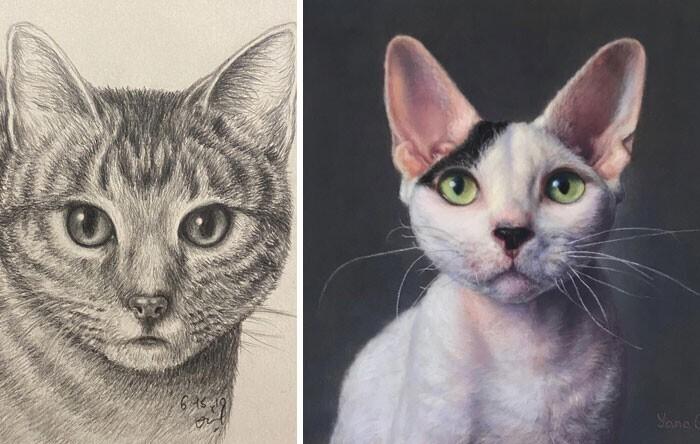 """""""Мой первый рисунок кошки и последний. Во всём нужна практика!"""""""