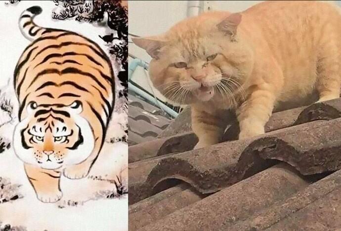 Тигра лютая