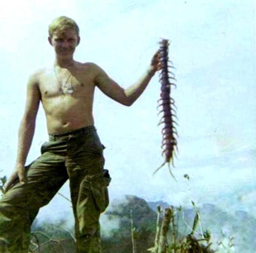 Солдат держит сороконожку в джунглях во Вьетнаме, 1967.