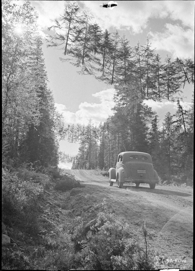 Закамуфлированная дорога в Финляндии во время Второй мировой войны