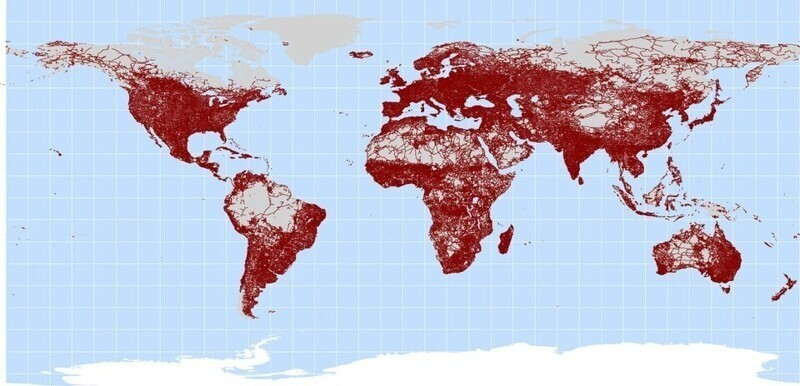 Карта всех мировых дорог