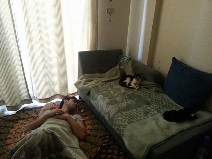"""""""Друг остался у меня с ночевкой. Когда я уходил, он спал на диване..."""""""